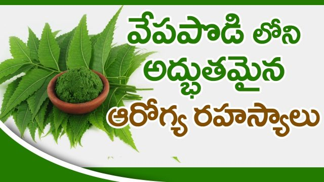 Neem Powder Benefits & Uses | Amazing Uses of Neem Powder | Health Tips | Health Facts Telugu