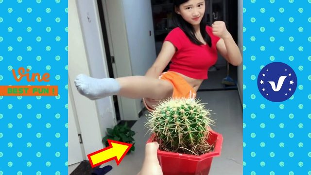 New Funny Videos 2020 | People doing stupid things